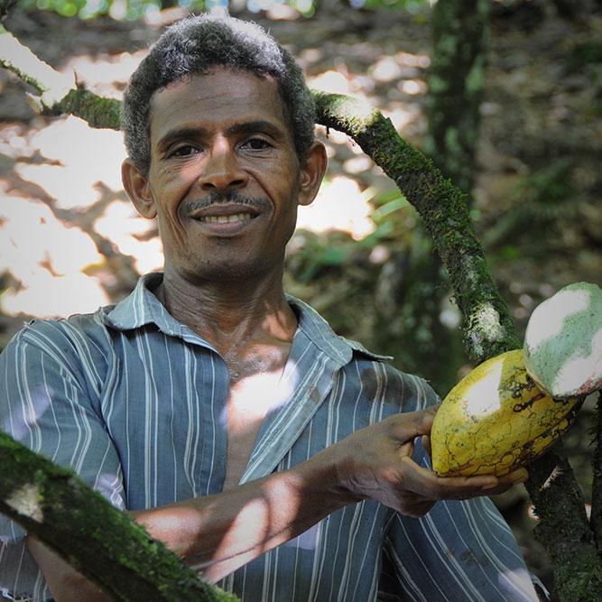 Cacao Trace: Cacao Farmer