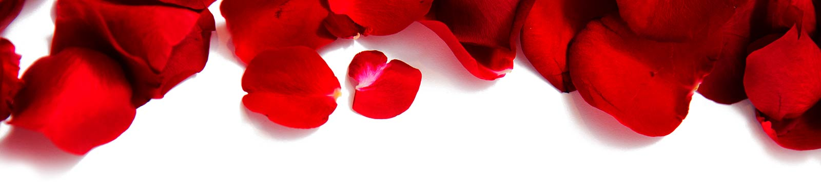 Rose petals ready at the table
