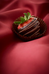 Dark Chocolate Covered Strawberry
